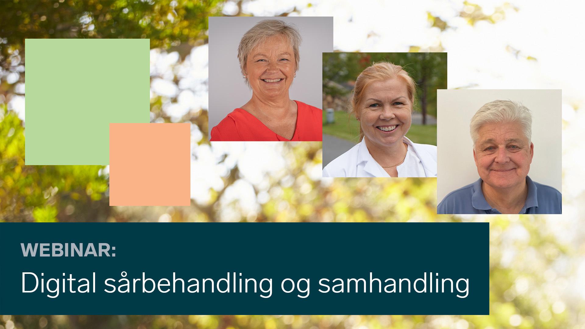 Bodil Bach, Ingebjørg Irgens og Mark Miller delte erfaringer med digital sårbehandling.